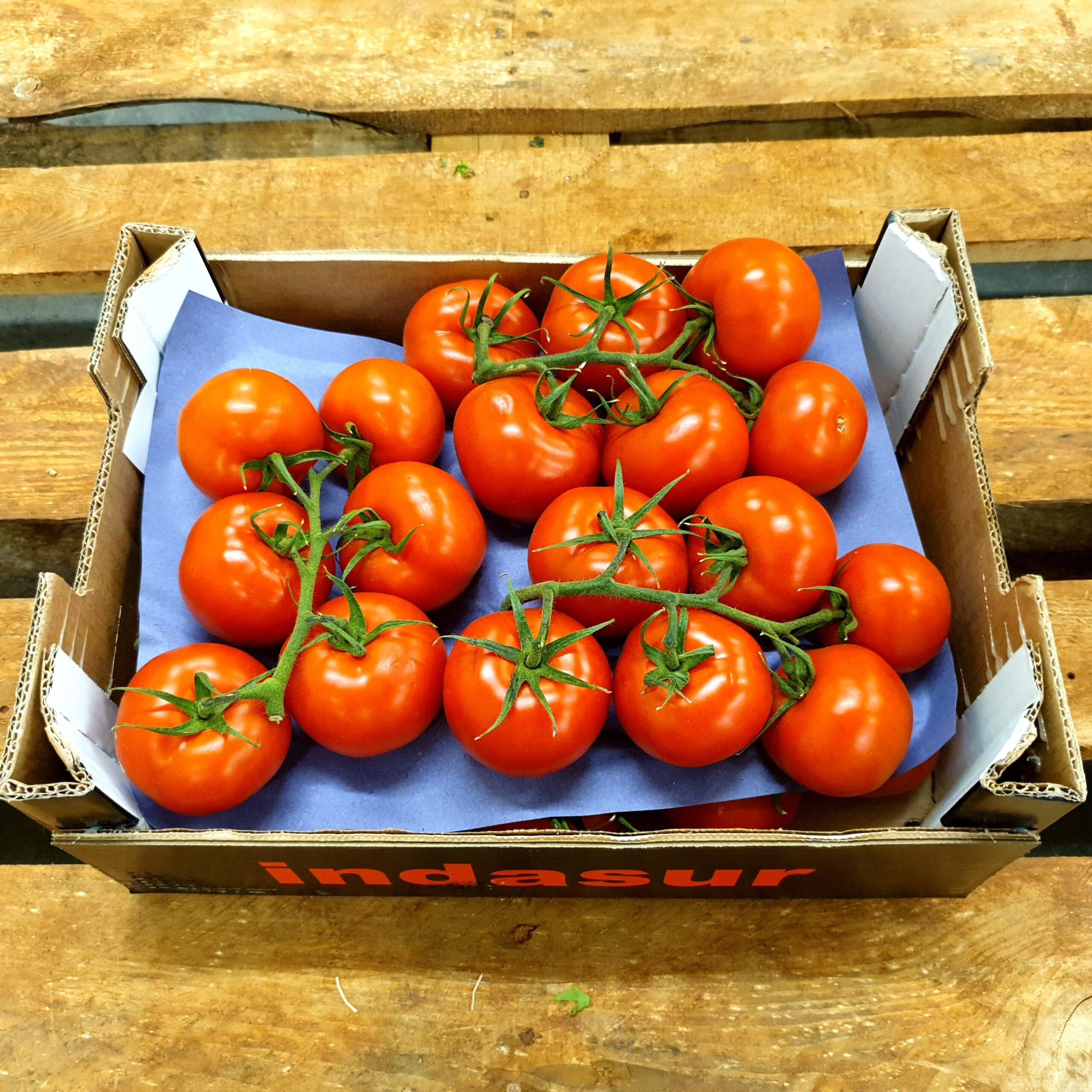 Rispen Tomaten