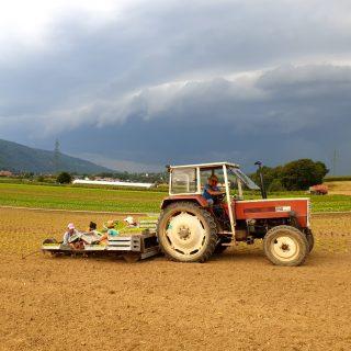 penz.farm